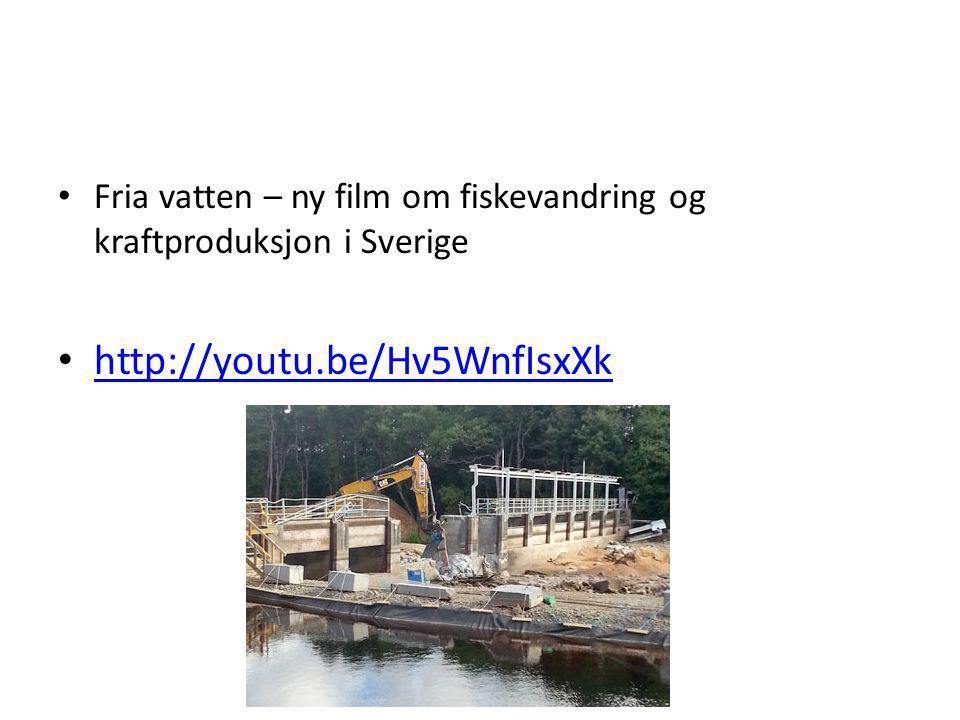 Fria vatten – ny film om fiskevandring og kraftproduksjon i Sverige