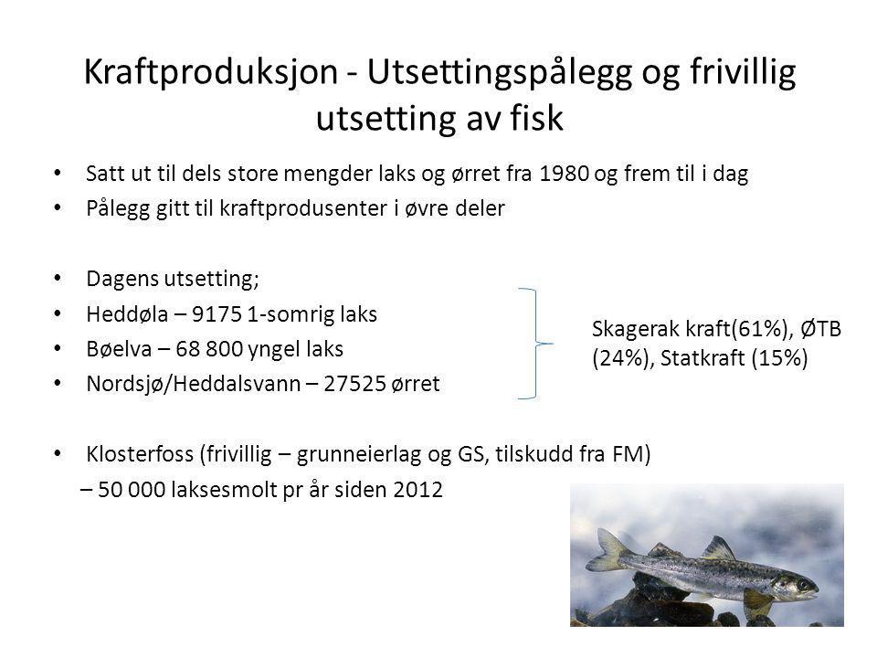 Kraftproduksjon - Utsettingspålegg og frivillig utsetting av fisk