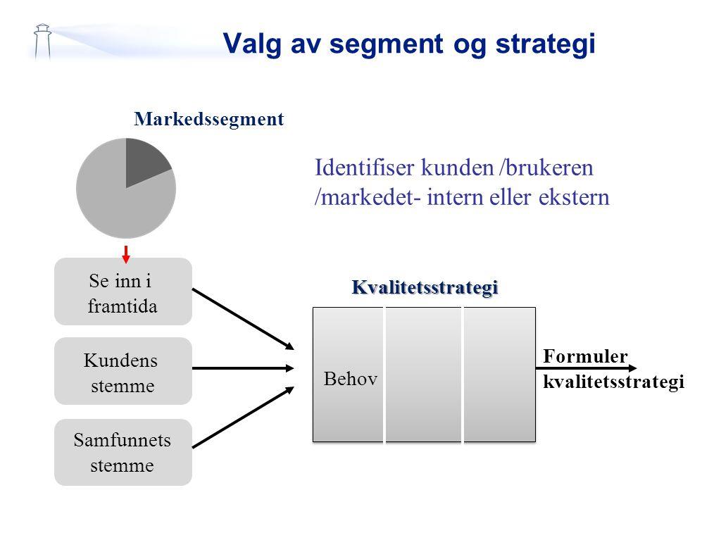 Valg av segment og strategi