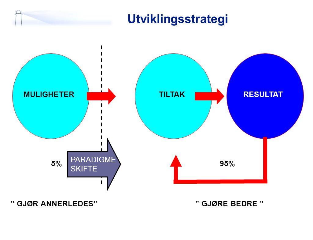 Utviklingsstrategi MULIGHETER TILTAK RESULTAT PARADIGME SKIFTE 5% 95%