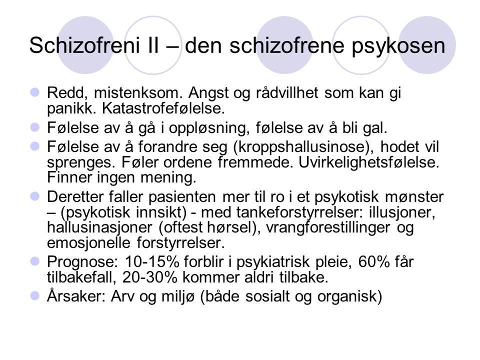 Schizofreni II – den schizofrene psykosen
