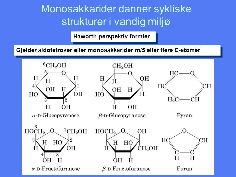 Monosakkarider danner sykliske strukturer i vandig miljø