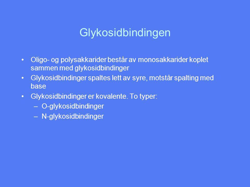 Glykosidbindingen Oligo- og polysakkarider består av monosakkarider koplet sammen med glykosidbindinger.