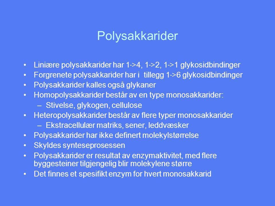 Polysakkarider Liniære polysakkarider har 1->4, 1->2, 1->1 glykosidbindinger. Forgrenete polysakkarider har i tillegg 1->6 glykosidbindinger.