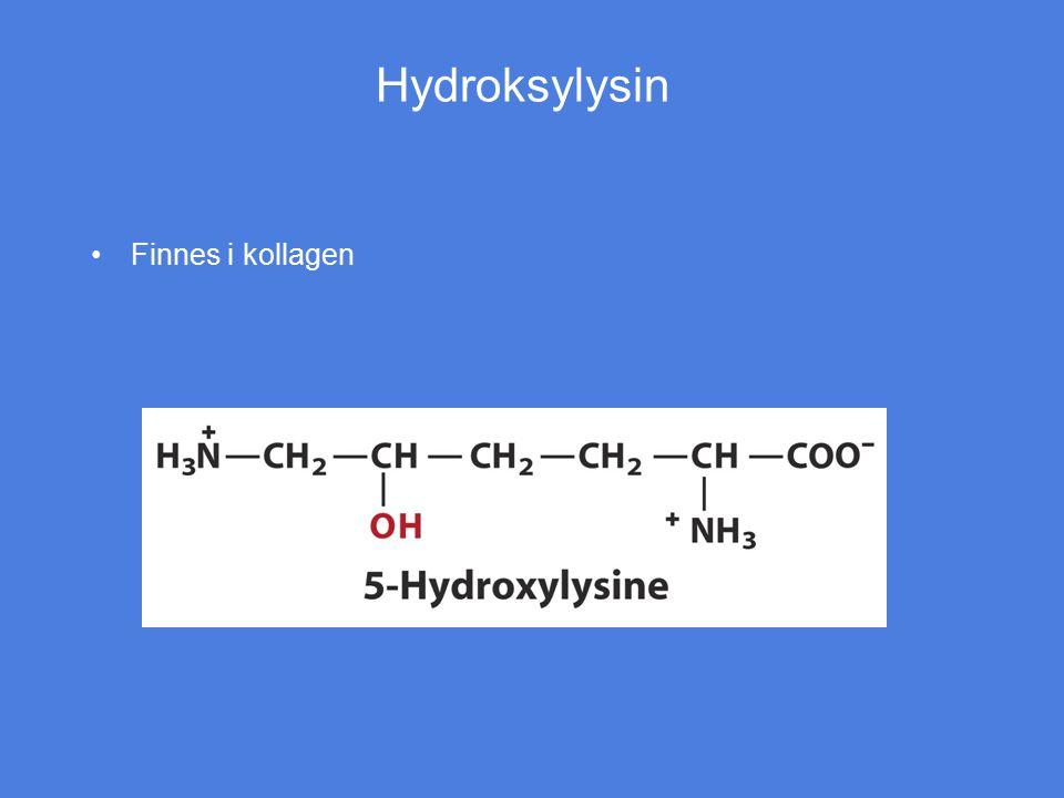 Hydroksylysin Finnes i kollagen