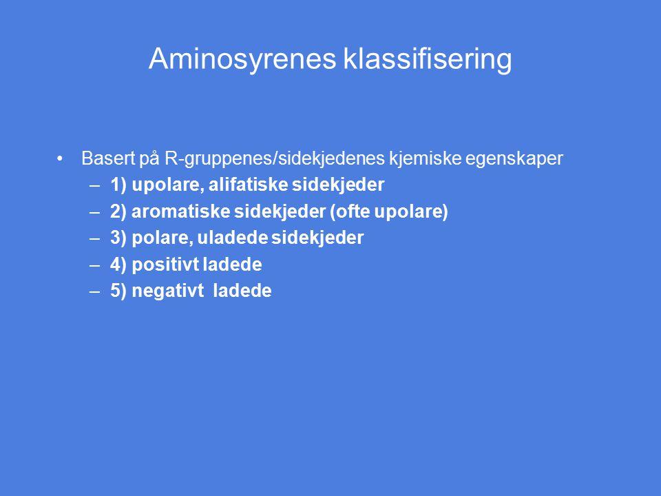 Aminosyrenes klassifisering