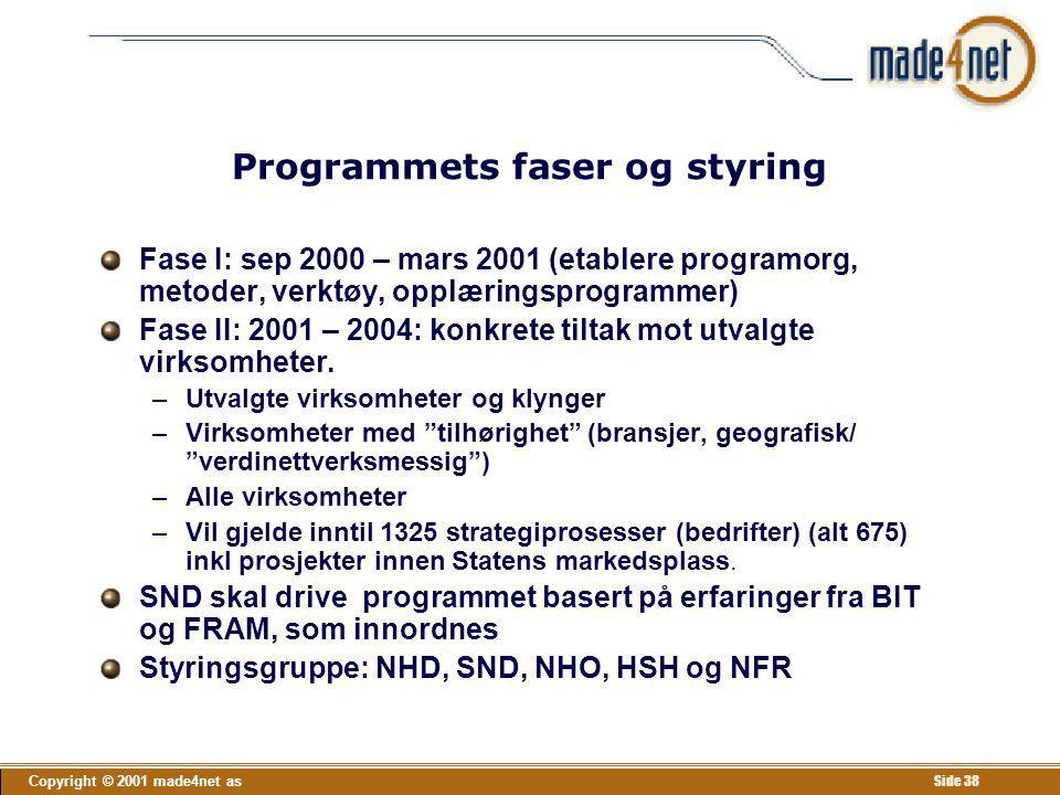 Programmets faser og styring