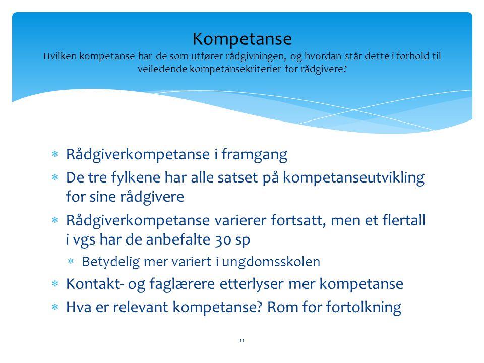 Kompetanse Hvilken kompetanse har de som utfører rådgivningen, og hvordan står dette i forhold til veiledende kompetansekriterier for rådgivere
