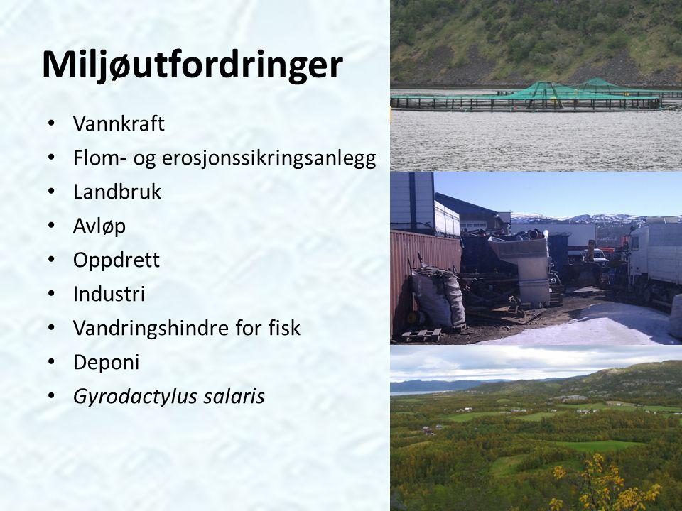 Miljøutfordringer Vannkraft Flom- og erosjonssikringsanlegg Landbruk