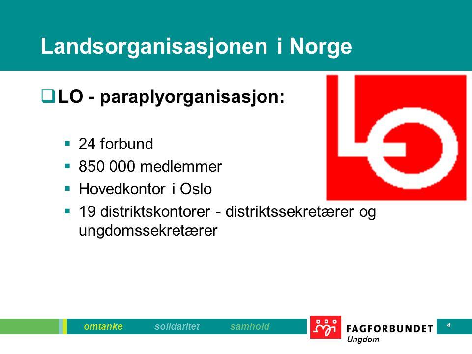 Landsorganisasjonen i Norge