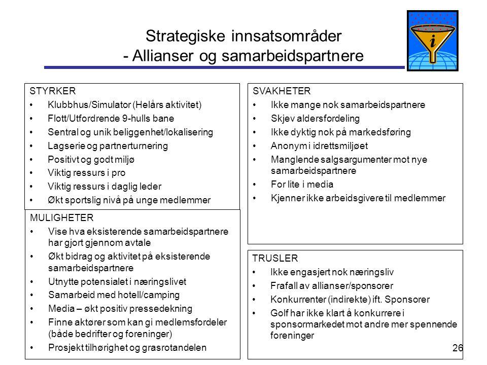 Strategiske innsatsområder - Allianser og samarbeidspartnere