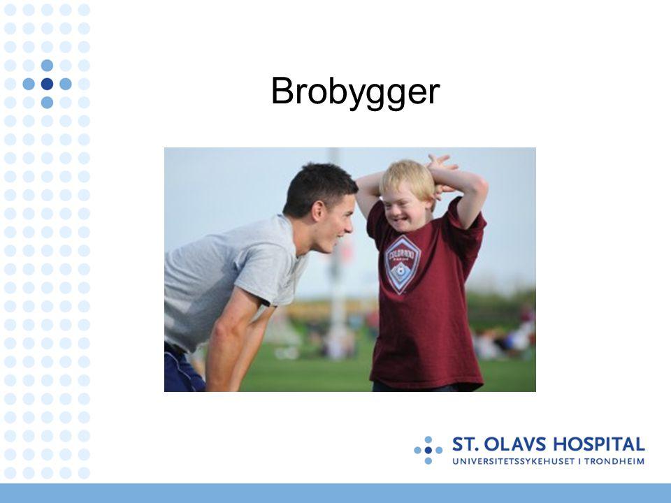 Brobygger