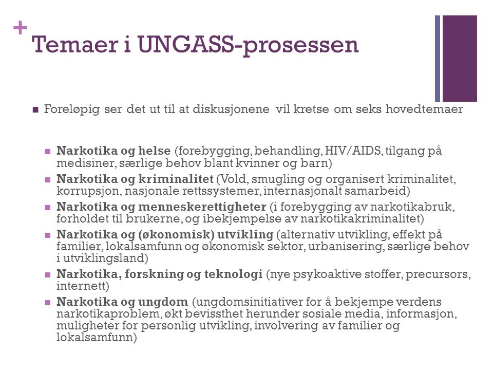 Temaer i UNGASS-prosessen