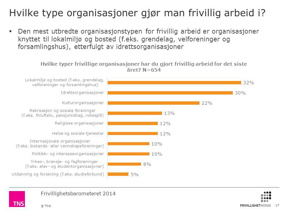 Hvilke type organisasjoner gjør man frivillig arbeid i