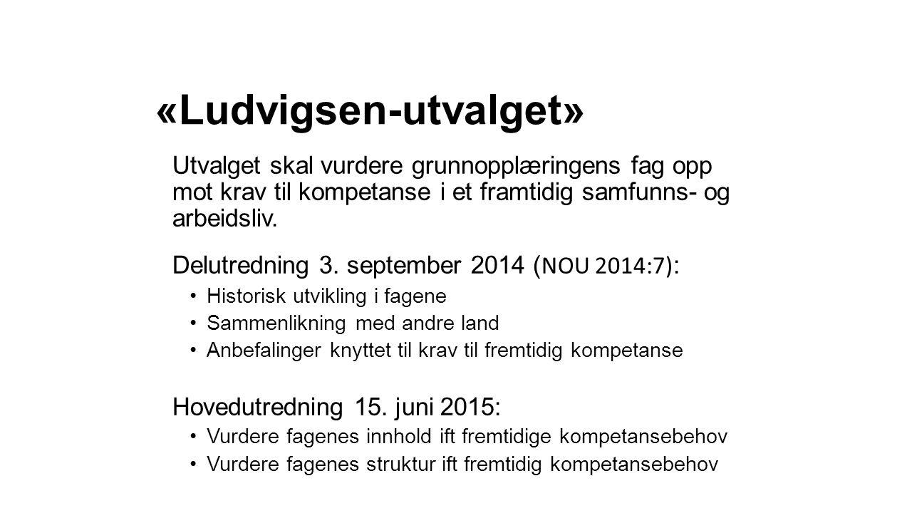«Ludvigsen-utvalget»