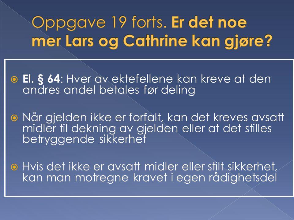 Oppgave 19 forts. Er det noe mer Lars og Cathrine kan gjøre