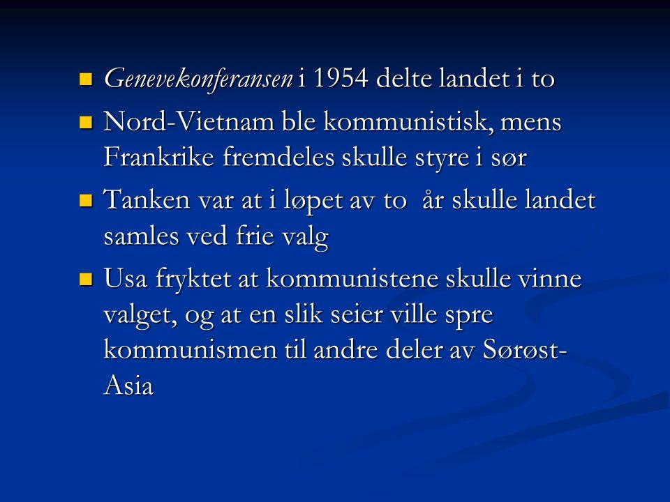 Genevekonferansen i 1954 delte landet i to
