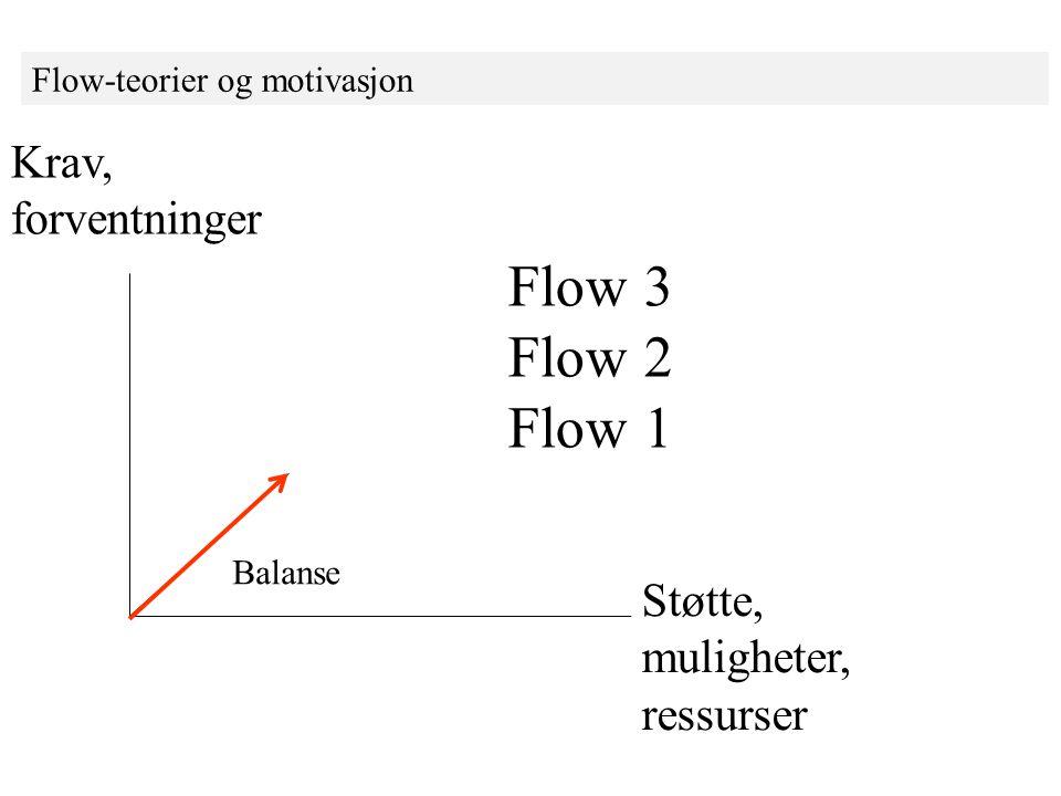 Flow 3 Flow 2 Flow 1 Krav, forventninger Støtte, muligheter, ressurser