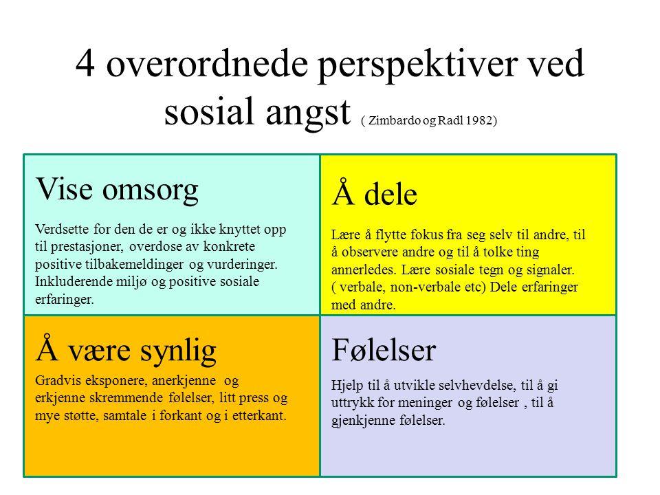 4 overordnede perspektiver ved sosial angst ( Zimbardo og Radl 1982)
