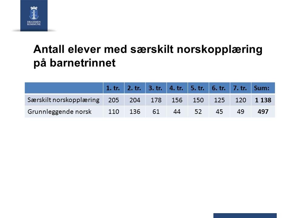 Antall elever med særskilt norskopplæring på barnetrinnet