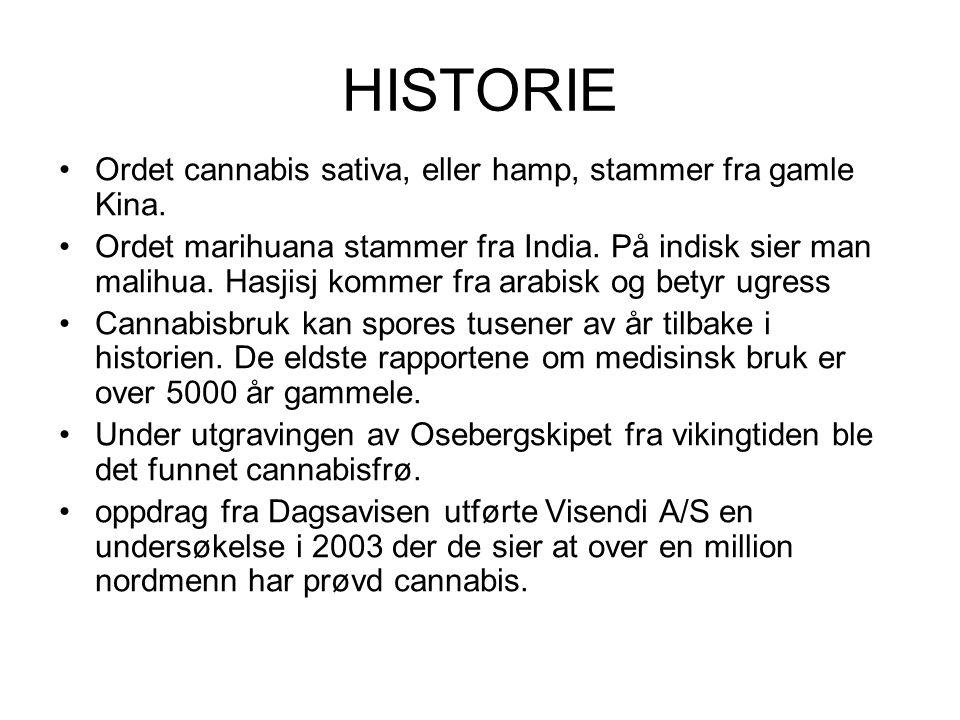 HISTORIE Ordet cannabis sativa, eller hamp, stammer fra gamle Kina.