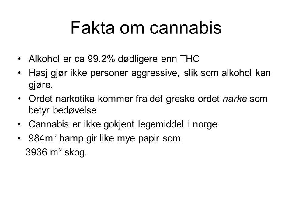 Fakta om cannabis Alkohol er ca 99.2% dødligere enn THC