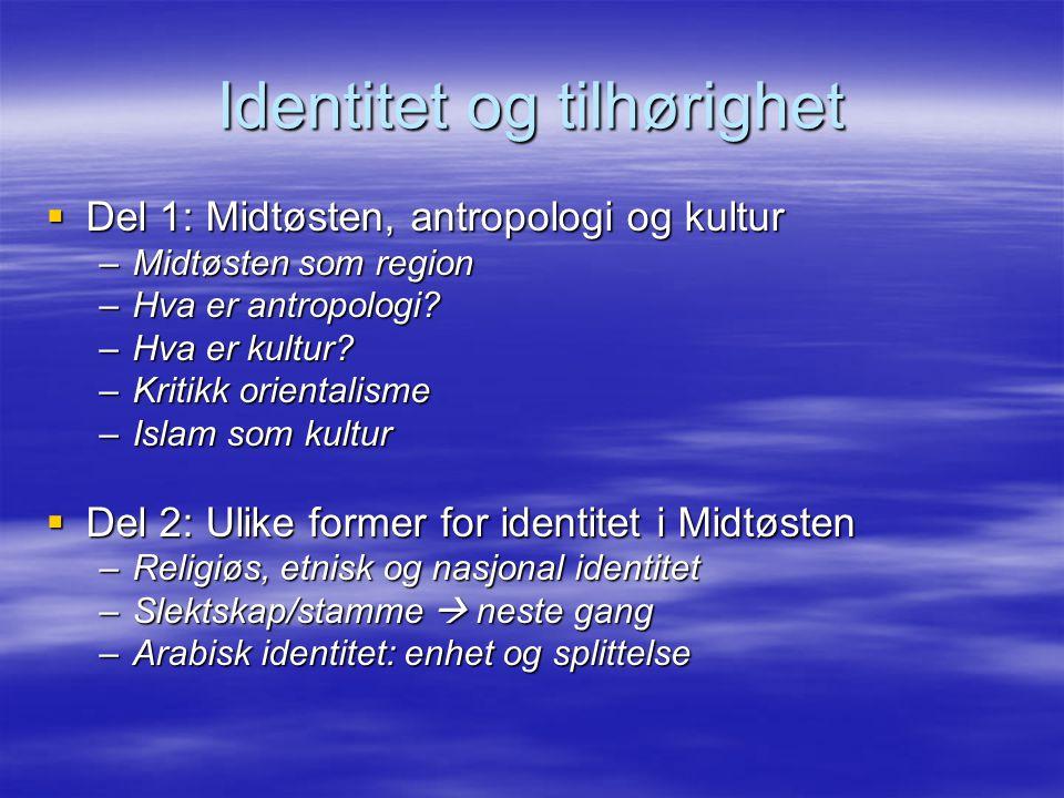 Identitet og tilhørighet