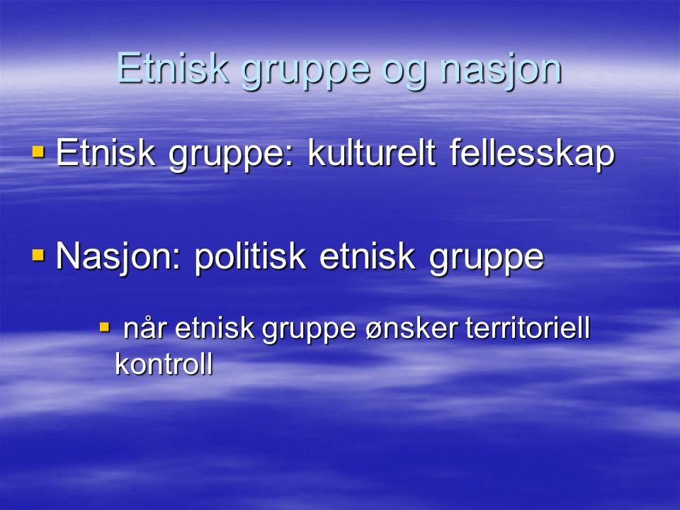 Etnisk gruppe og nasjon