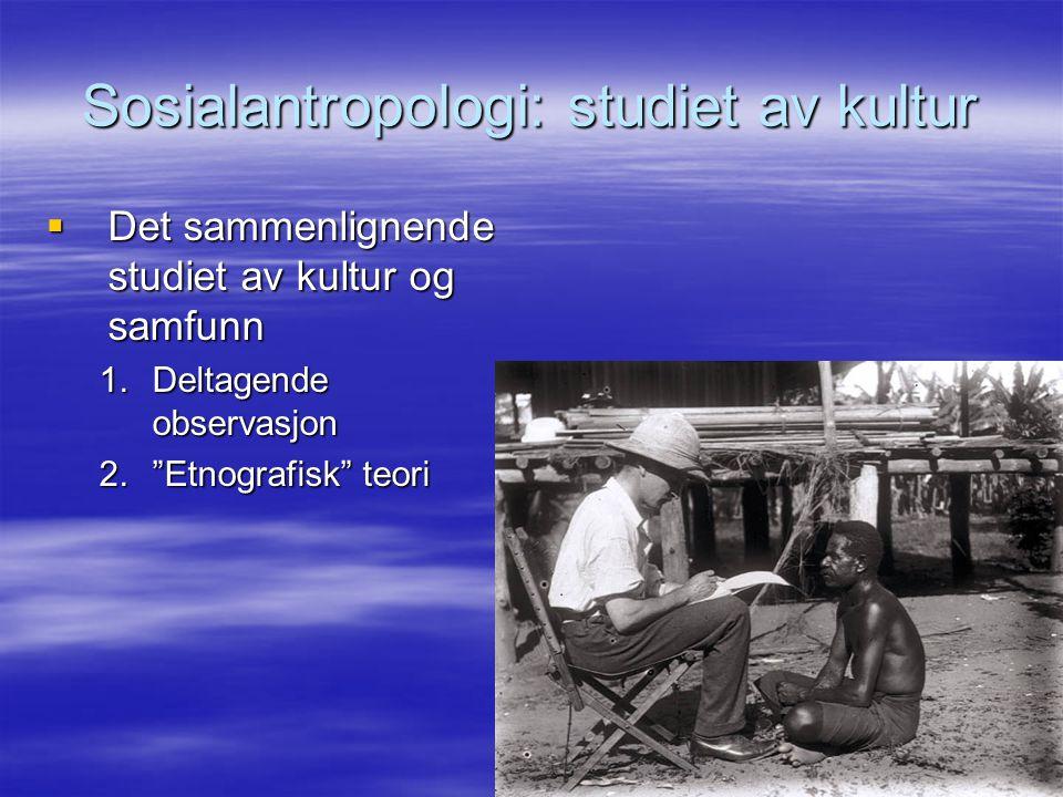 Sosialantropologi: studiet av kultur
