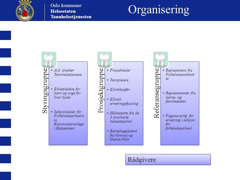 Organisering Styringsgruppe Prosjektgruppe Referansegruppe Rådgivere