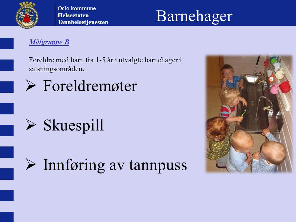 Barnehager Foreldremøter Skuespill Innføring av tannpuss Målgruppe B