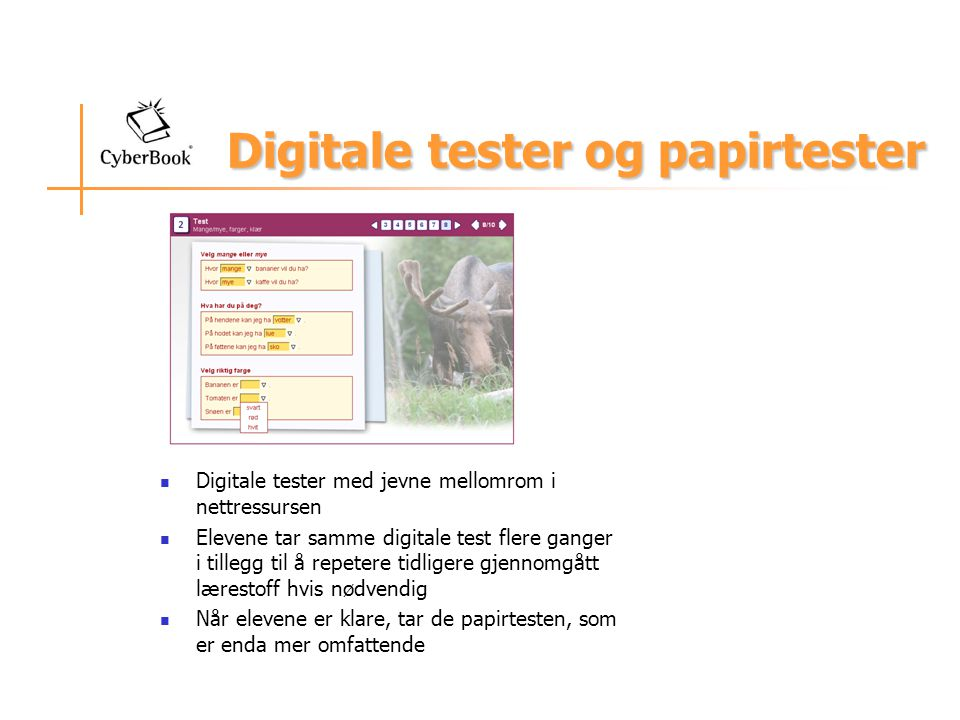 Digitale tester og papirtester