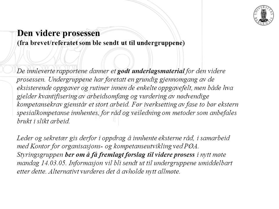 Den videre prosessen (fra brevet/referatet som ble sendt ut til undergruppene)
