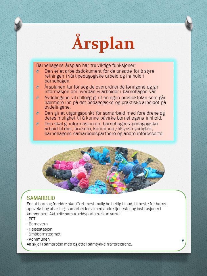 Årsplan SAMARBEID Barnehagens årsplan har tre viktige funksjoner: