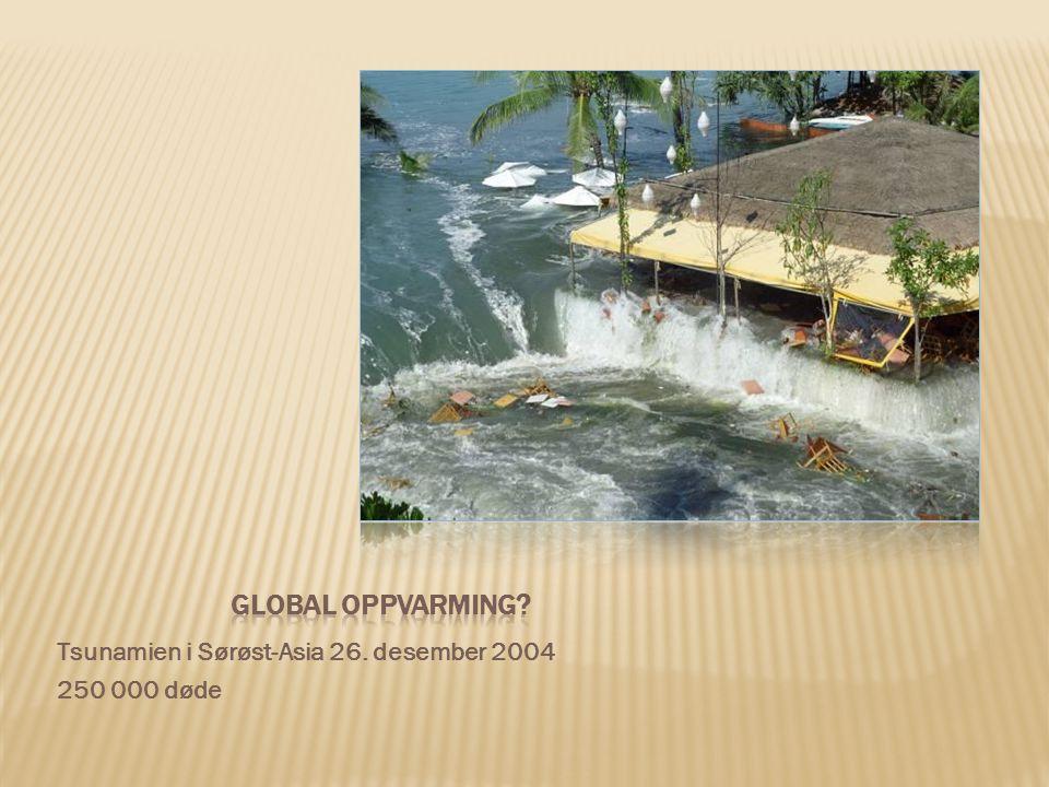 Global oppvarming Tsunamien i Sørøst-Asia 26. desember 2004