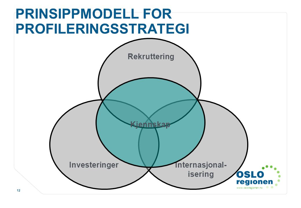 PRINSIPPMODELL FOR PROFILERINGSSTRATEGI