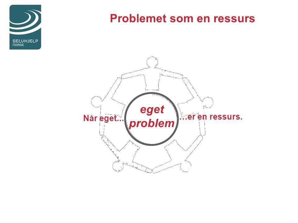 Problemet som en ressurs
