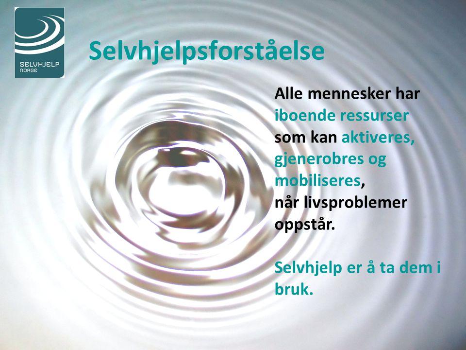 Selvhjelpsforståelse