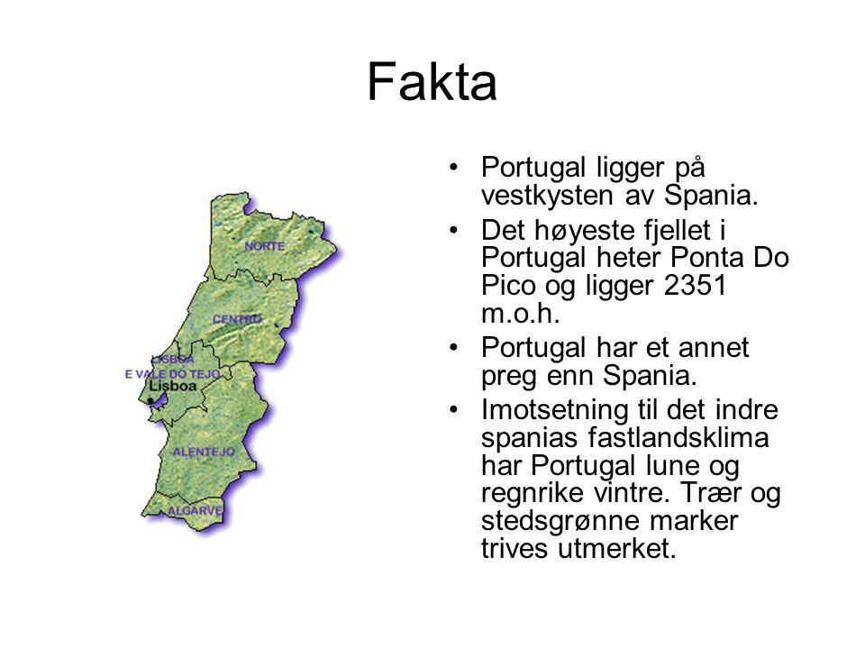 Fakta Portugal ligger på vestkysten av Spania.