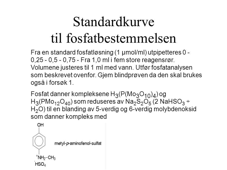 Standardkurve til fosfatbestemmelsen