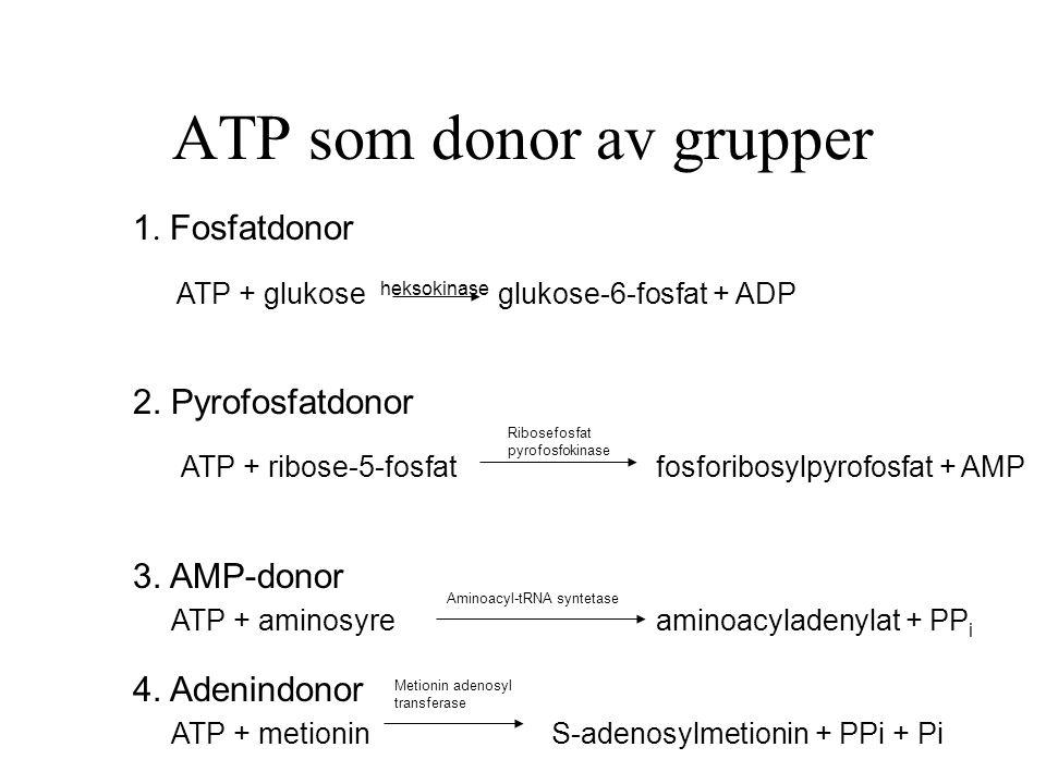 ATP som donor av grupper