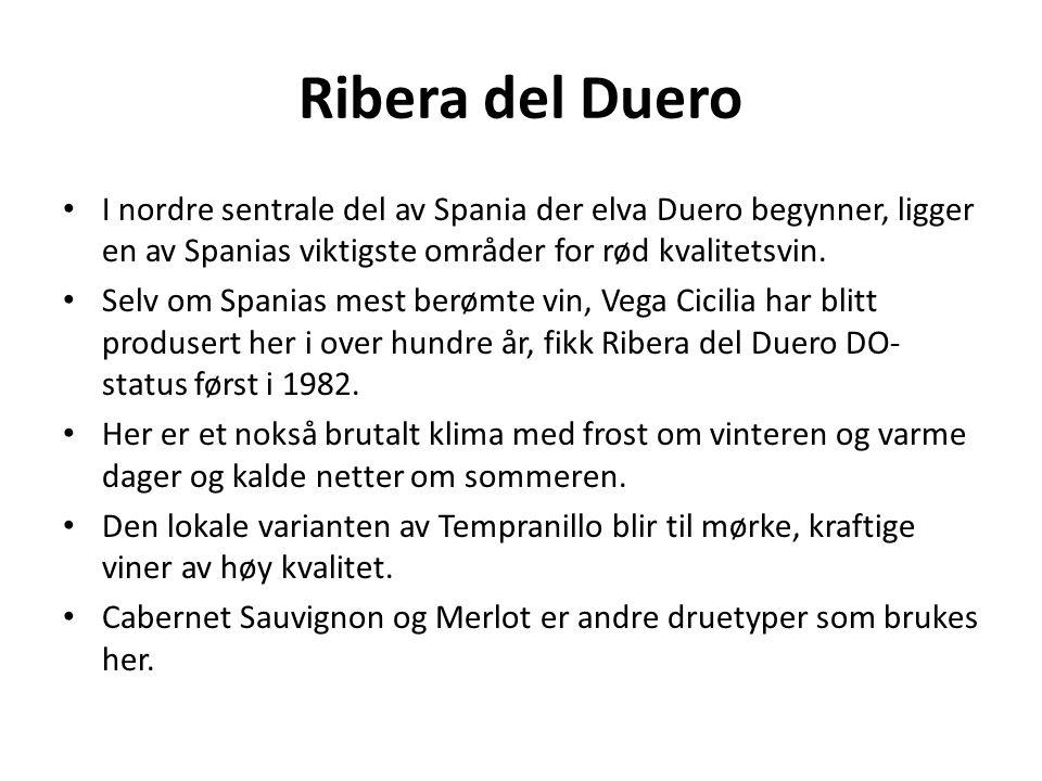 Ribera del Duero I nordre sentrale del av Spania der elva Duero begynner, ligger en av Spanias viktigste områder for rød kvalitetsvin.