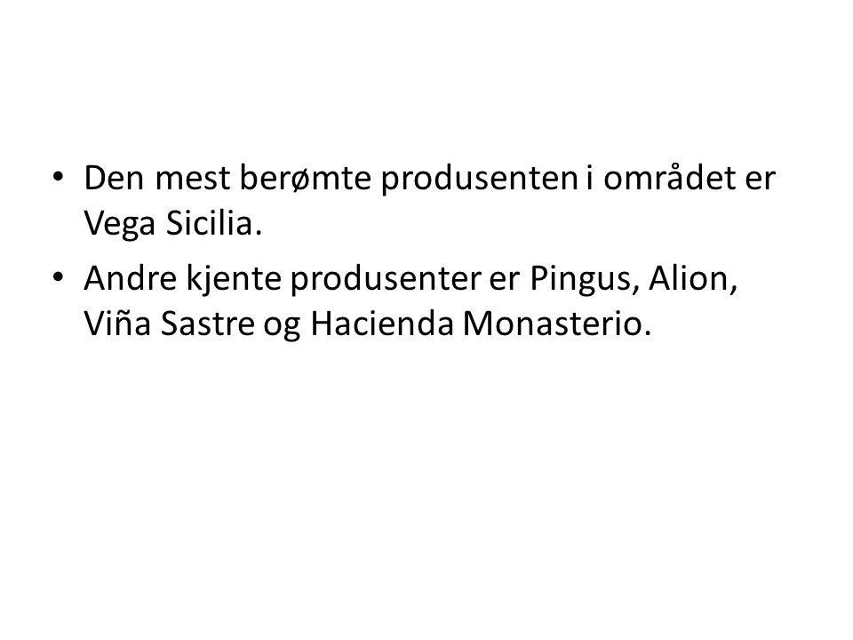 Den mest berømte produsenten i området er Vega Sicilia.