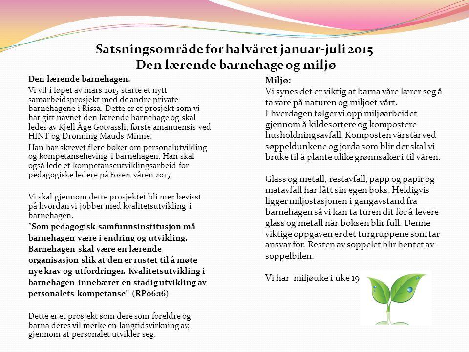 Satsningsområde for halvåret januar-juli 2015 Den lærende barnehage og miljø