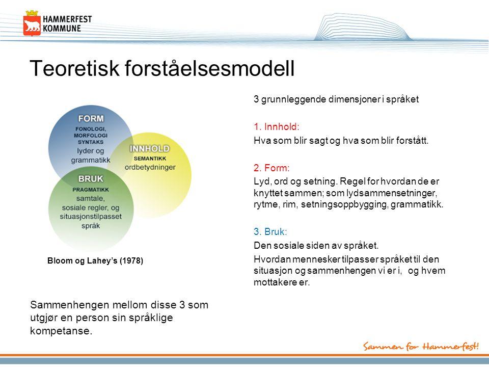 Teoretisk forståelsesmodell
