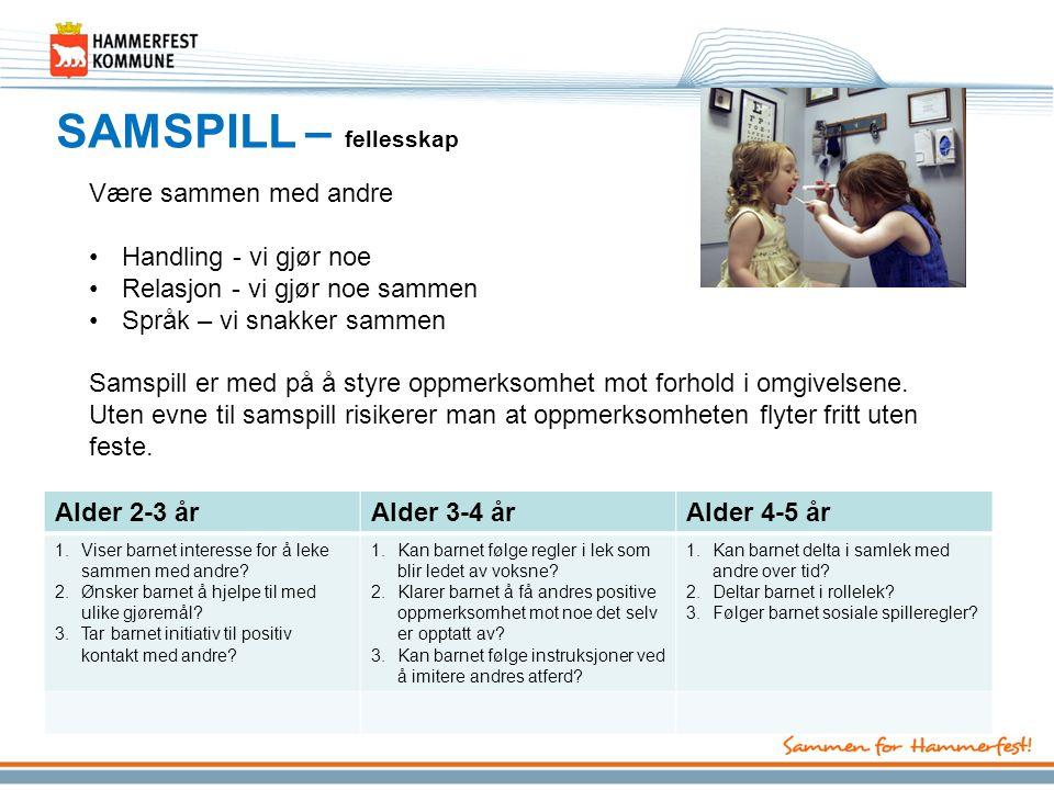 SAMSPILL – fellesskap Være sammen med andre Handling - vi gjør noe