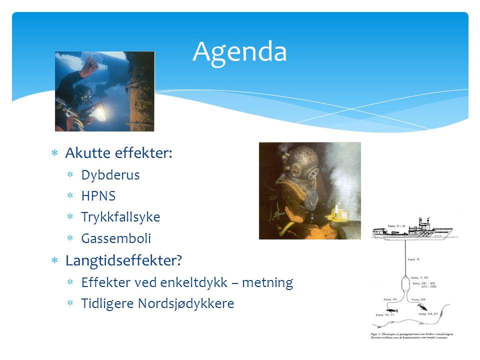 Agenda Akutte effekter: Langtidseffekter Dybderus HPNS Trykkfallsyke