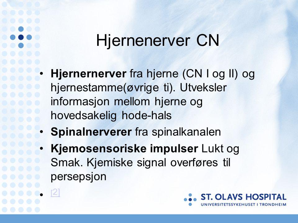 Hjernenerver CN Hjernernerver fra hjerne (CN I og II) og hjernestamme(øvrige ti). Utveksler informasjon mellom hjerne og hovedsakelig hode-hals.