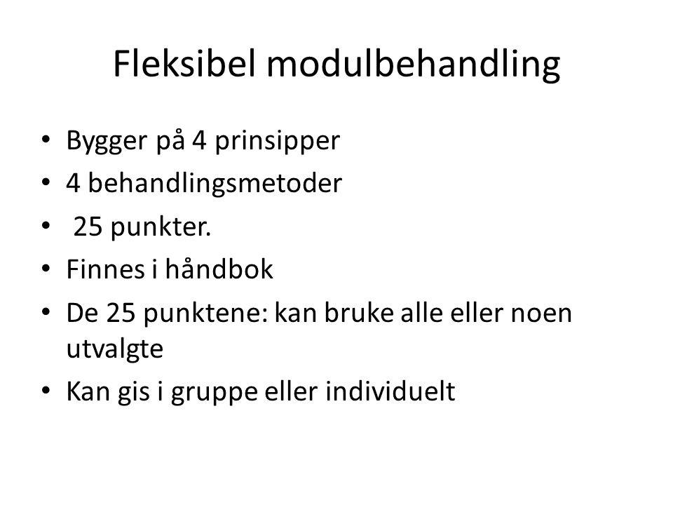 Fleksibel modulbehandling