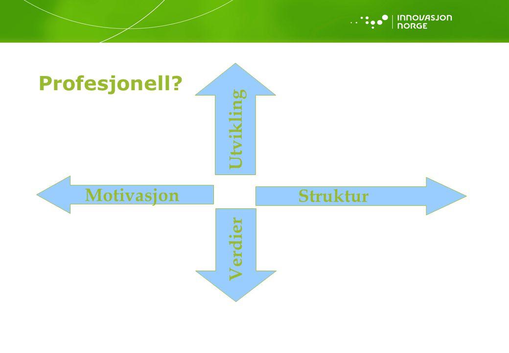 Profesjonell Utvikling Motivasjon Struktur Verdier Kvalitet: